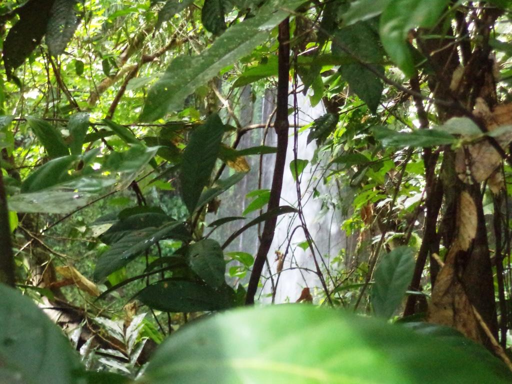 Buruwisan Falls